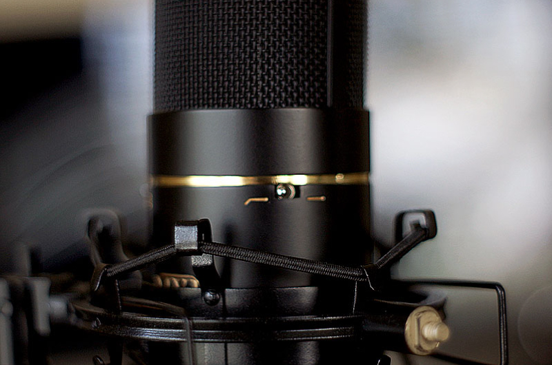 Leigh James Voice Microphone